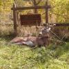 Soth eastern Ohio hunting club
